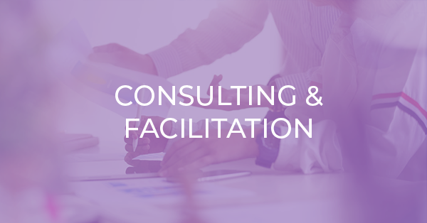 Consulting and facilitation purppl