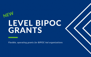 Social enterprise funding and opportunities - Level BIPOC Grants